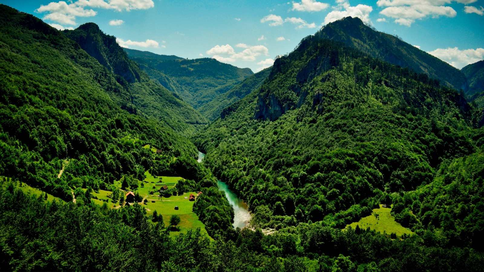 1494100108 priroda - Флора и фауна Черногории