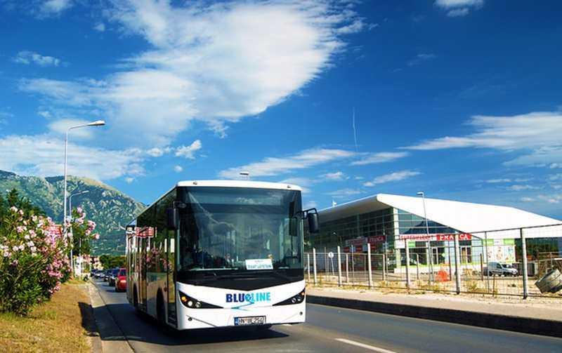 Автобусы в Которе