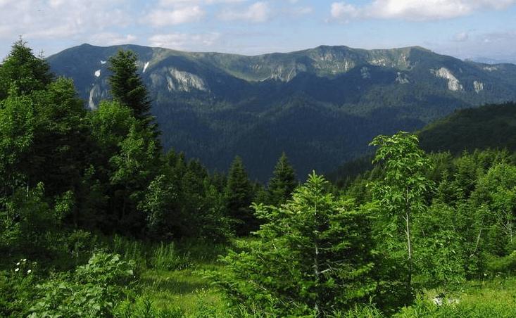 Достопримечательности в Колашине - Национальный парк Биоградская гора