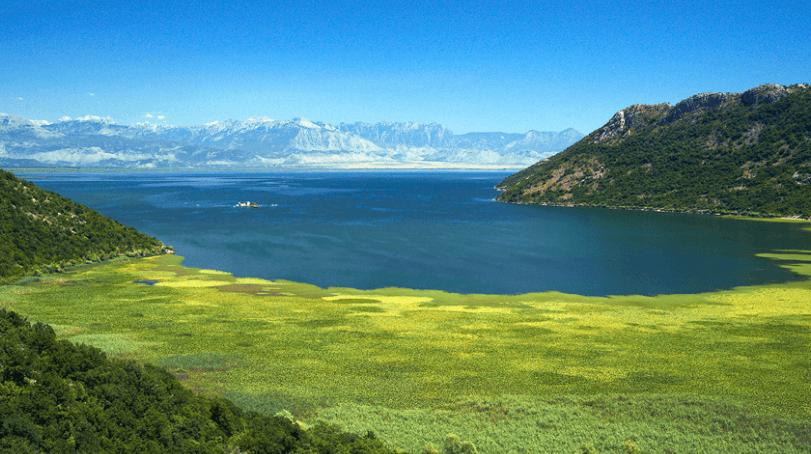Screenshot 25 2 - Скадарское озеро: сила спокойствия или тишина гиганта
