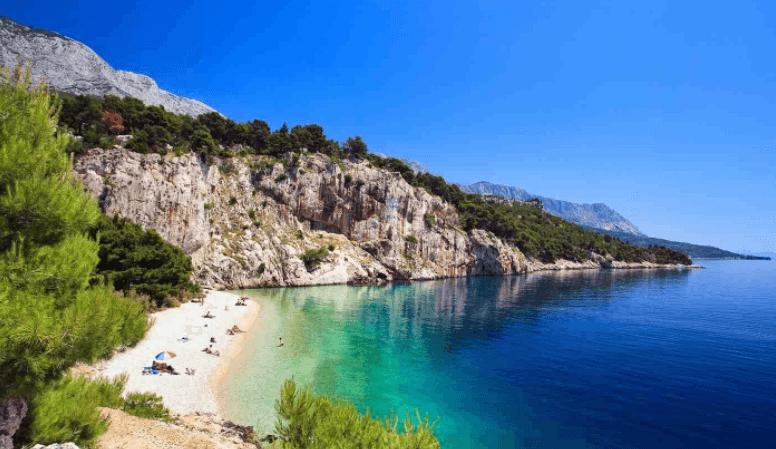 Screenshot 29 6 - Акулы в Черногории